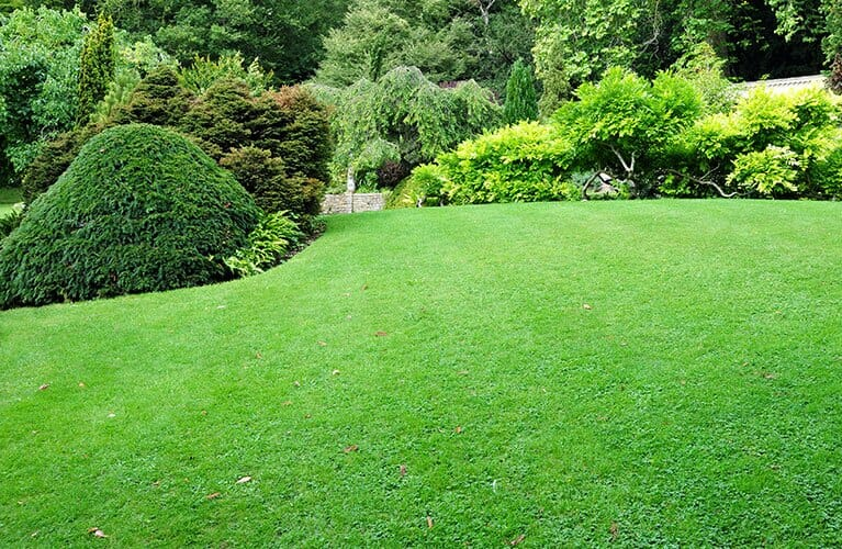 local gardeners in london gardening services in london