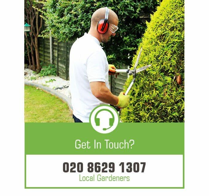 Local gardeners in london gardening services in london for Local gardening services