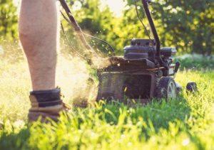 gardening services hammersmith