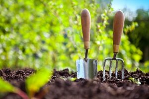 gardening services in merton