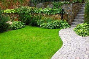 landscaping and gardening services in redbridge