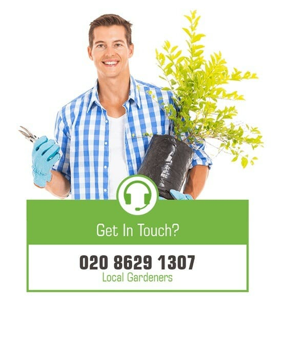 gardening services in lewisham