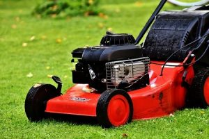 lawn care and patio cleaning in merton