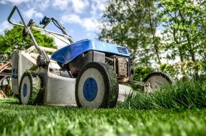 Lawn Mower 384589 1920